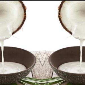 santan-kelapa-2