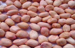 Manfaat Menakjubkan dari Kacang Tanah