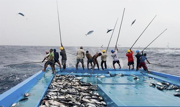 Sumber Daya Laut