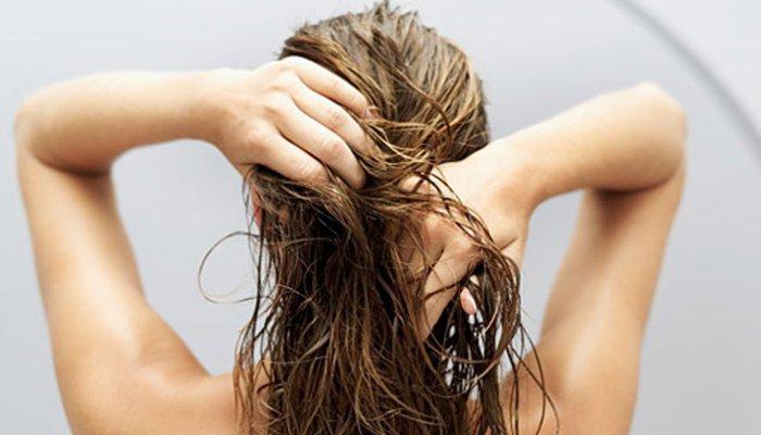 Tips Kecantikan Rambut Tradisional Dengan Bahan Alami Mudation Com